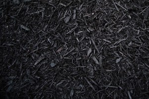 black-mulch-sm