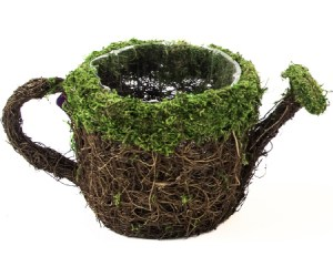 moss watering can